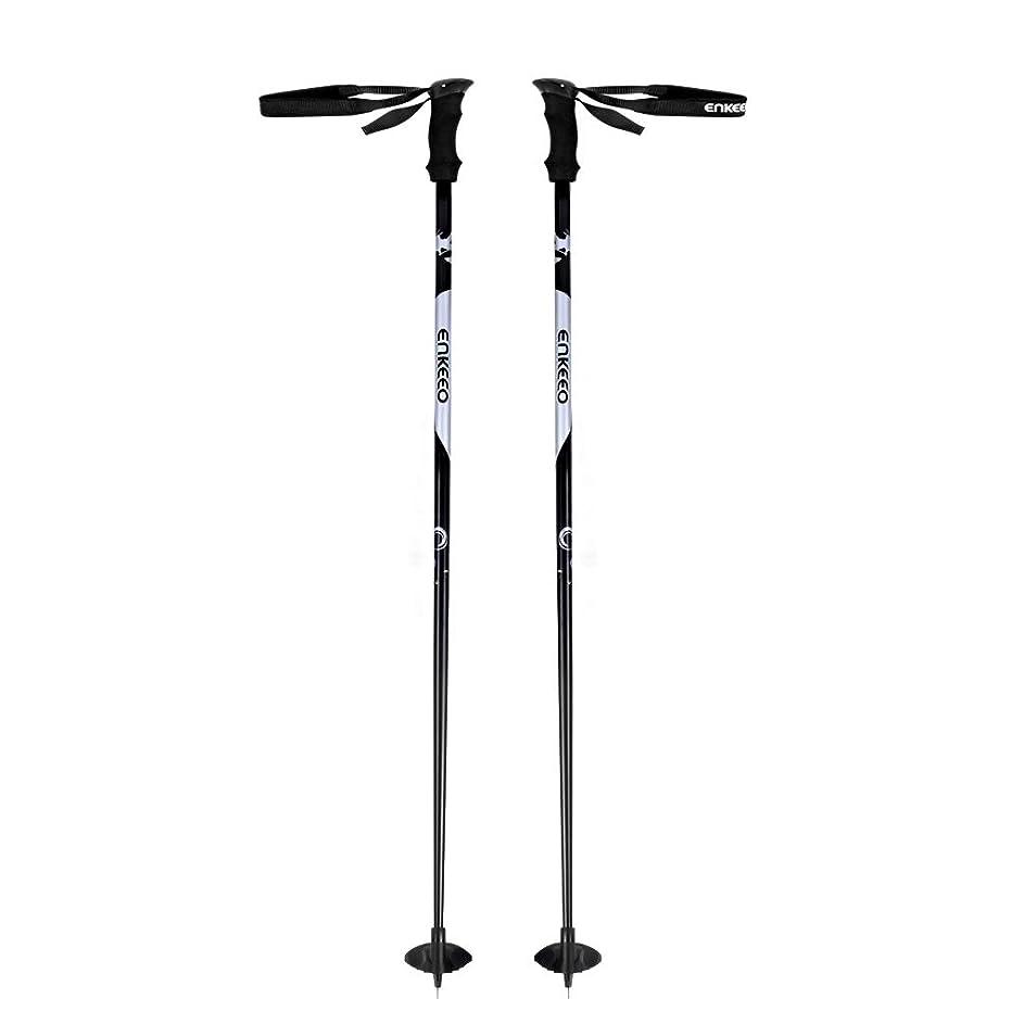 参照するアレイ平行サロモン(SALOMON) スキーストック スキーポール ARCTIC (アークティック) ブラック L39019800 110~120