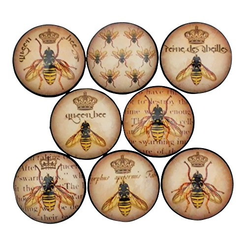 Bee Knob (Set of 8 Queen Bee Wood Cabinet Knobs)