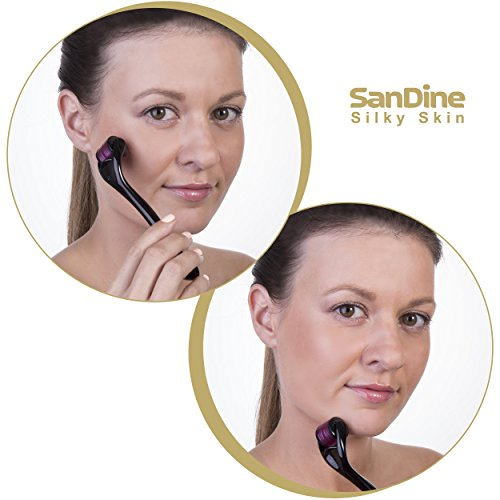 Microneedle Roller - Derma Roller 0.2mm - Micro Roller Kit 540 Needles - Ideal for Young and Radiant Skin - Micro needle Face Roller for Silky Beautiful Skin - Titanium for Home Use by Sandine by SanDine Silky Skin (Image #6)