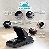 Pest Control Rat Traps, Professional Multi Captsure Set of 6 Large Snap Trap, Solutions for Indoor Outdoor AntiRodent Protection, Reusable Master Trapping Against Mouse, Chipmunk, Squirrel