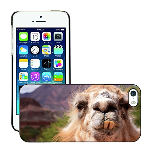 Premio Sottile Slim Cassa Custodia Case Cover Shell // V00002129 drôle de lama // Apple iPhone 5 5S 5G