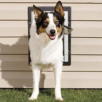 Petsafe Wall Entry Aluminum Pet Door Medium Amazon Pet Supplies