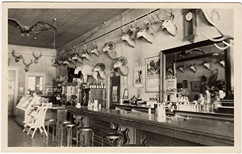 Real Photo Postcard Interior of a Bar/Restaurant w/ Animals on the Walls~94278