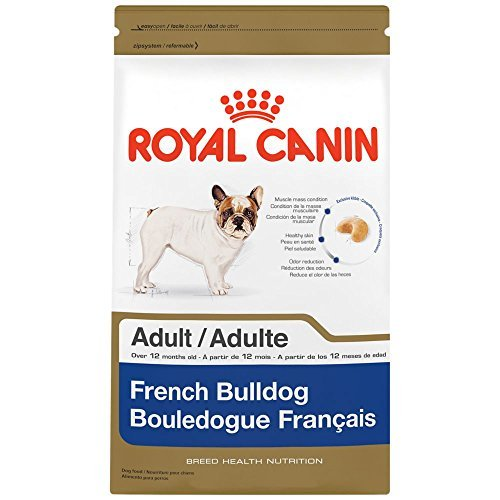 Royal Canin Breed Health Nutrition French Bulldog Adult dry dog food 6 lb. by Royal Canin