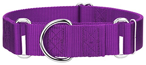10 - Country Brook Design 1 1/2 Inch Martingale Heavyduty Nylon Dog Collars - Purple - Extra Large