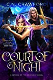Court of Night: A Demons of Fire and Night Novel (Institute of the Shadow Fae Book 3)