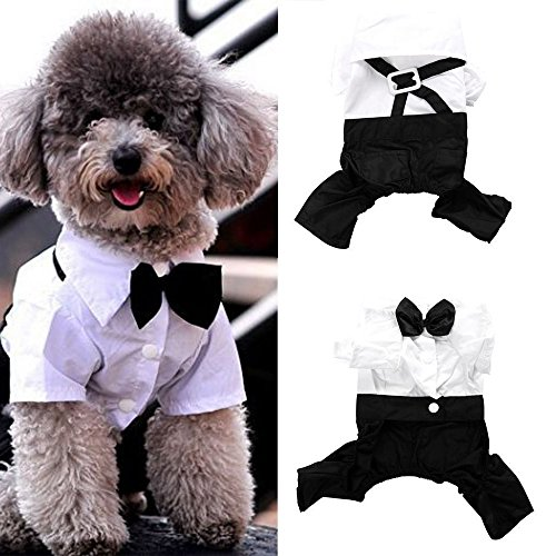 (Shuohu Pet Prince Groom Tuxedo Shirt Suit with Bow Tie Costume for Puppy Dog)