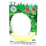 2018 Hot Sale Sweet Melon Hybrid Oval Fruit Seeds, 200 Seeds, Original Pack, White Skin Light Green Inside Crisp Tasty 17% Sugar