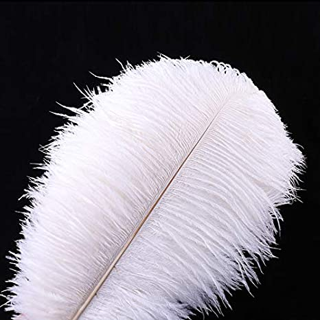 White Natural 10-12 inch Ostrich Feathers for Wedding Centerpieces Home Decoration 20Pcs 25-30cm