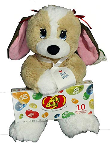 Twisted Anchor Trading Co Get Well Gift Set for Kids - 2 Piece Plush Dog Melancholy Melanie and Jelly Belly Gift Box
