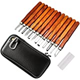 GOGOMAX 12 Pcs Wood Carving Tools Carbon Steel Chisel Set with Whetstone and Storage Case