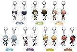 Nendoroid Petit nendoroid plus aidolishseven trading Acryl key chain vol.2 7 BOX...