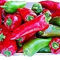 Pepper Tolli's Sweet USDA Certified Organic Vegetable Seed