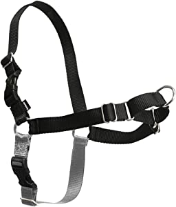 PetSafe Easy Walk Dog Harness, No Pull Dog Harness, Black/Silver, Medium/Large (EWH-HC-M/L-BLK)