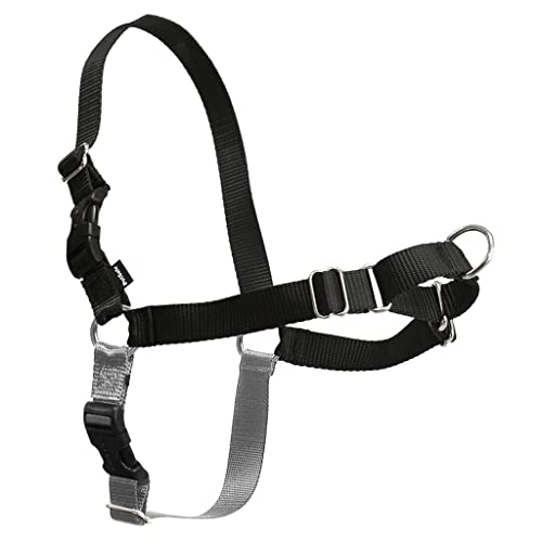 PetSafe-Easy-Walk-Dog-Harness,-Petite/Small