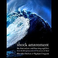 Shock Amazement (English Edition)