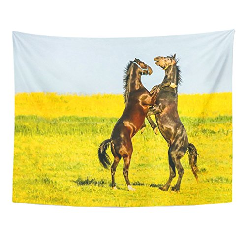 Ears Foal - Emvency Tapestry Mandala 50
