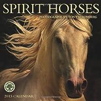 Spirit Horses, Photographs by Tony Stromberg 2015 Wall Calendar