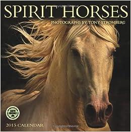 Spirit Horses Photographs By Tony Stromberg 2015 Wall