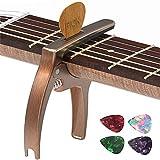 Bison Pro sound Guitars
