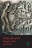 Daily Life of the Pagan Celts, Joan P. Alcock, 1846450217