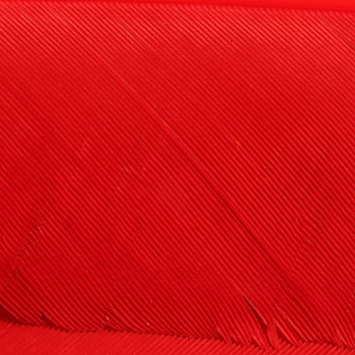 Hareline Turkey Biot Quills Red