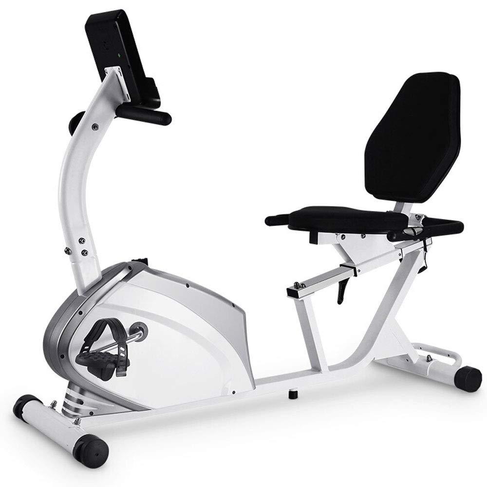 RY Sport-Fahrradeignungs-Übungsausrüstung des horizontalen Eignungsfahrrades Stille Hauptmagnetsteuerung Innen