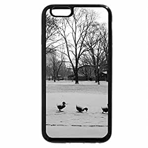 iPhone 6S Plus Case, iPhone 6 Plus Case (Black & White) - snow on ducks of stone in a park