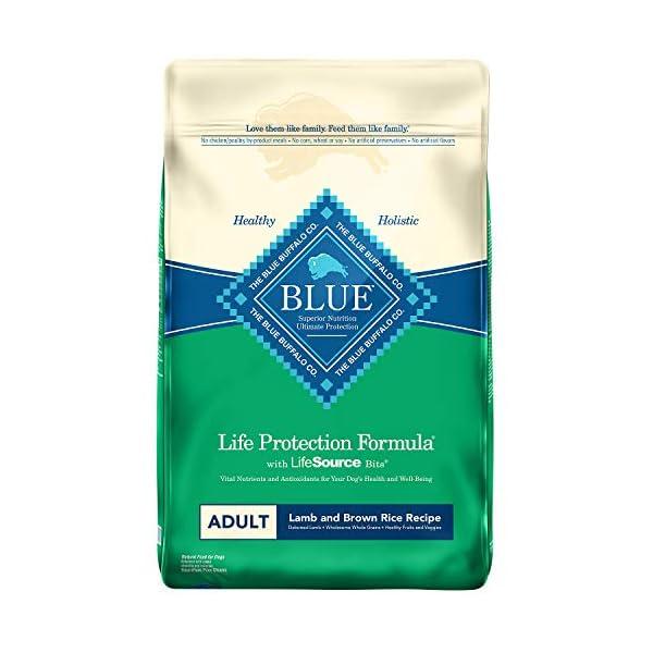 Blue Buffalo Life Protection Formula Natural Adult Dry Dog Food 1