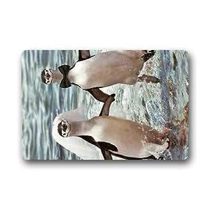 Funny Cute pingüinos interior y exterior Felpudo (23,6x 39,88cm)