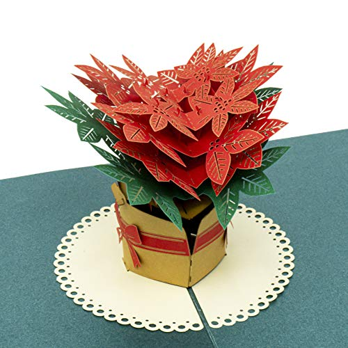 Paper Love Poinsettia Flowers Pop Up Card, 3D Popup Greeting Cards, For Christmas, Birthday, Graduation, Thank You, Any Occasion