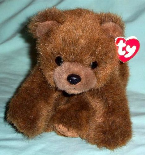 - TY Classic Plush - FOREST the Bear (Brown Version)