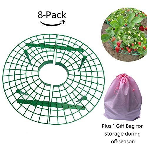 TheSunnyPiny 2018 Upgraded 8 Pack Easy to Use Strawberry Support, Plant Cradle Rack Support with 4 Sturdy Legs,Durable, Reusable, Adjustable,Plus 1 Bag for Storage,Gift Packing Purpose, by TheSunnyPiny