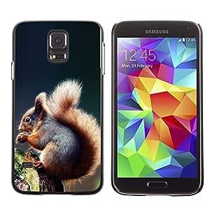 YOYO Slim PC / Aluminium Case Cover Armor Shell Portection //Cool Squirrel //Samsung Galaxy S5