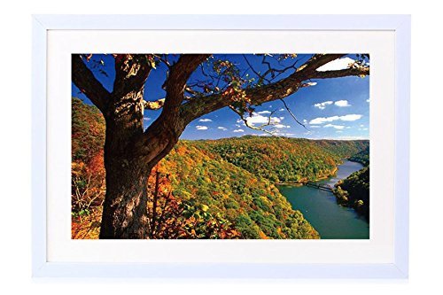 Hawks Nest State Park, West Virginia - Art Print White Wood Framed Wall Art Picture 24x16 inches - Nest Park Hawks
