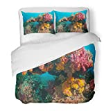 SanChic Duvet Cover Set Red Coral Colorful Reef Scene Raja Ampat Indonesia Blue Colourful Decorative Bedding Set with Pillow Sham Twin Size