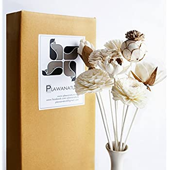 Plawanature Set of 8 Mixed Sola Wood Flower Reed Diffuser for Home Fragrance Aroma Oil.