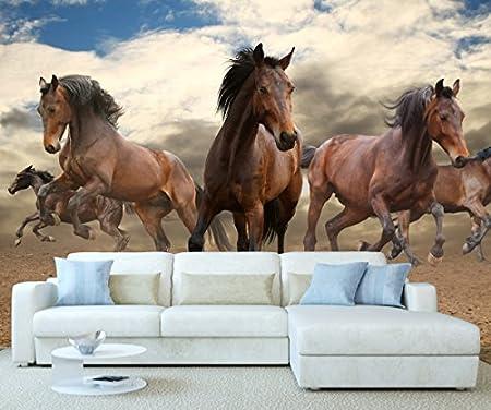 Stickerswall Wild Horses Wildlife Animal Nature Wall Mural Photo
