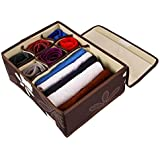 UberLyfe 6 Cell Drawer Closet Divider Storage Box Storage Boxes for Clothes, Shoes, Undergarments, Bra, Socks with Lid (Color Brown) - (UW-000162-BRWL6C)