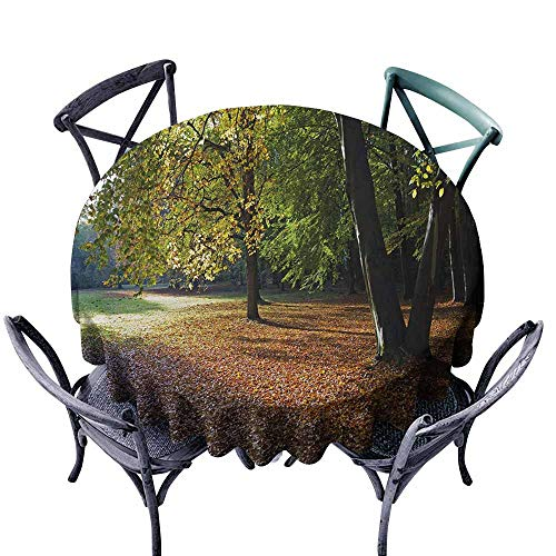 Ficldxc Restaurant Tablecloth Nature Tranquil Tiergarten in Berlin Germany Forest Sightseeing Urban View Autumn Season Green Orange Party D47