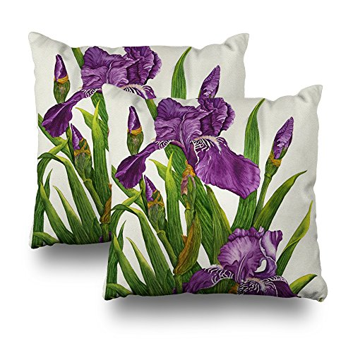 Decorativepillows Set of 2 18 x 18 inch Throw Pillow Covers,Purple Iris Botanical Pattern Double-Sided Decorative Home Decor Indoor/Outdoor Garden Sofa Bedroom Car Kitchen Nice Gift - White Purple Iris