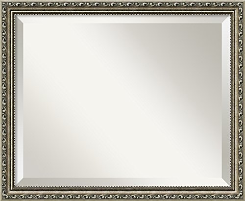 Cabinet Beaded Framed Mirror - Wall Mirror Medium, Parisian Silver Wood: Outer Size 22 x 18
