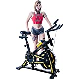 Merax Pro Fitness indoor Cycling Trainer Exercise Bike Review