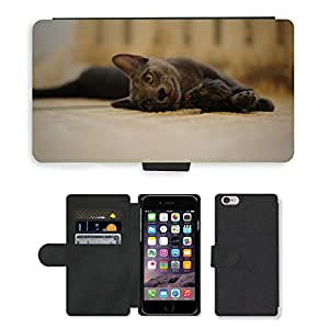 """Super Stella Cell Phone Card Slot PU Leather Wallet Case // M00146728 Cat Animal Pet Animals Cats // Apple iPhone 6 4.7"""""""