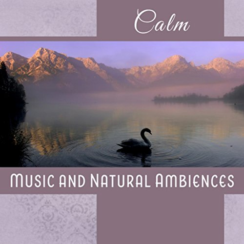 Calm (Music and Natural Ambiences for Meditation and Sleep, Peaceful Afternoon, Relax After Nightfall, Serene Experience)