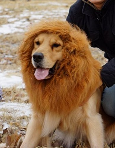 [6MILES 1 Pcs Brown Lion Mane Wig for Dog and Cat Costume Pet Fancy Lion Hair Dog Clothes Dress for Halloween Christmas Easter Festival Party] (Dog Lion Costume Large)