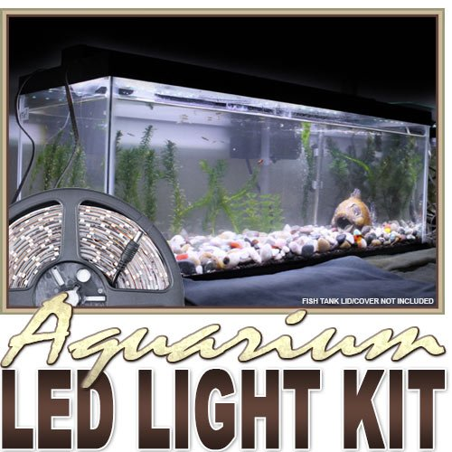 ite Aquarium Tank Coral White LED Backlight Night Light On/Off Switch Control Kit - Main Lighting Sub Fresh Water Salt Water Tanks Water Resistant 3528 SMD Flexible DIY 110V-220V ()