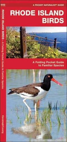 Rhode Island Birds: A Folding Pocket Guide to Familiar Species (A Pocket Naturalist - Waterford Stores Ct In