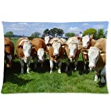 "Custom Cattle Cow Herd Rectangle Pillow Cases Pillowcase Covers Standard Size 20""x30"" (Twin Sides)"
