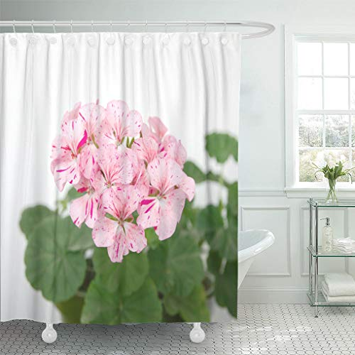 Emvency Shower Curtain Green Bloom Geranium Plant Horizon Divas Ripple Mixed with Spotty Pink Flowers Blooming Shower Curtains Sets with Hooks 60 x 72 Inches Waterproof Polyester Fabric